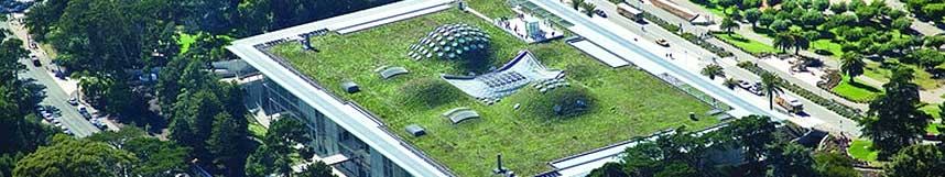 building with a green roof