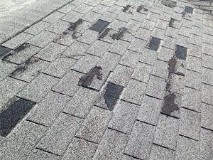 claim roof damage