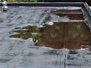 stop water ponding on a flat roof